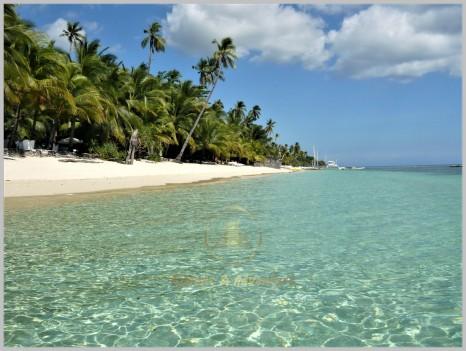 Beaches 11