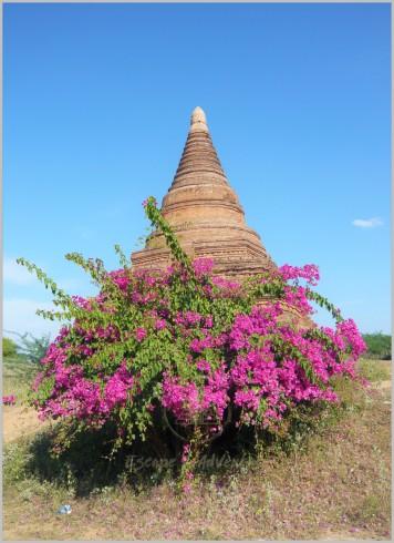 Bagan - Burma/Myanmar