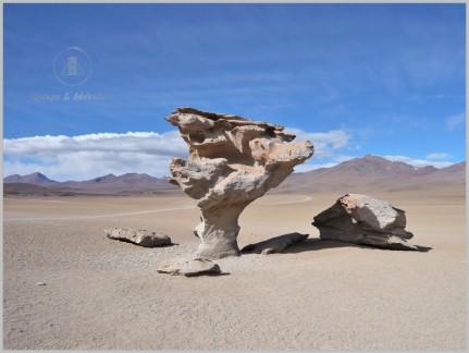 Arbol de Piedra - Bolivia