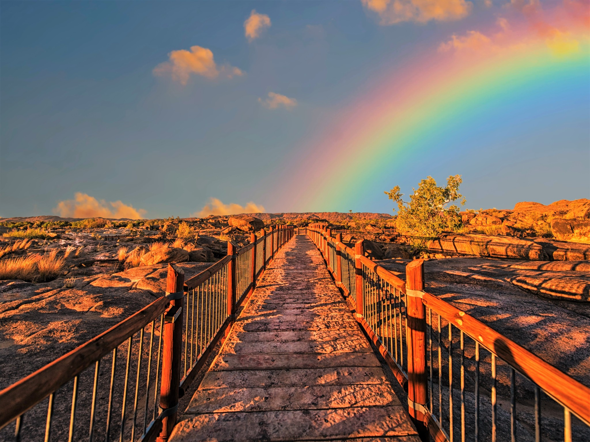 Dark barren path with a colourful rainbow rising from the horizon.
