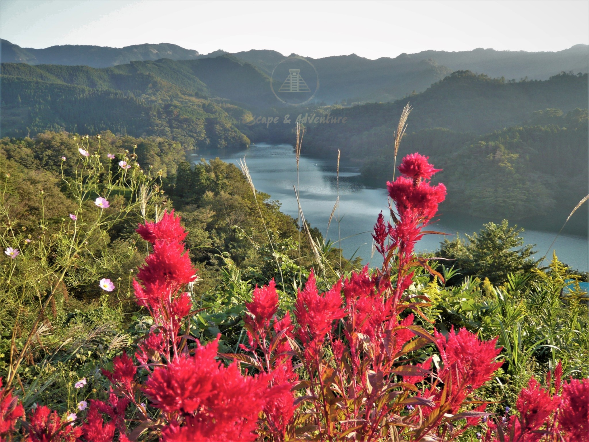 Scenic lake surrounded by verdant green mountains with bright red flowers in the foreground.