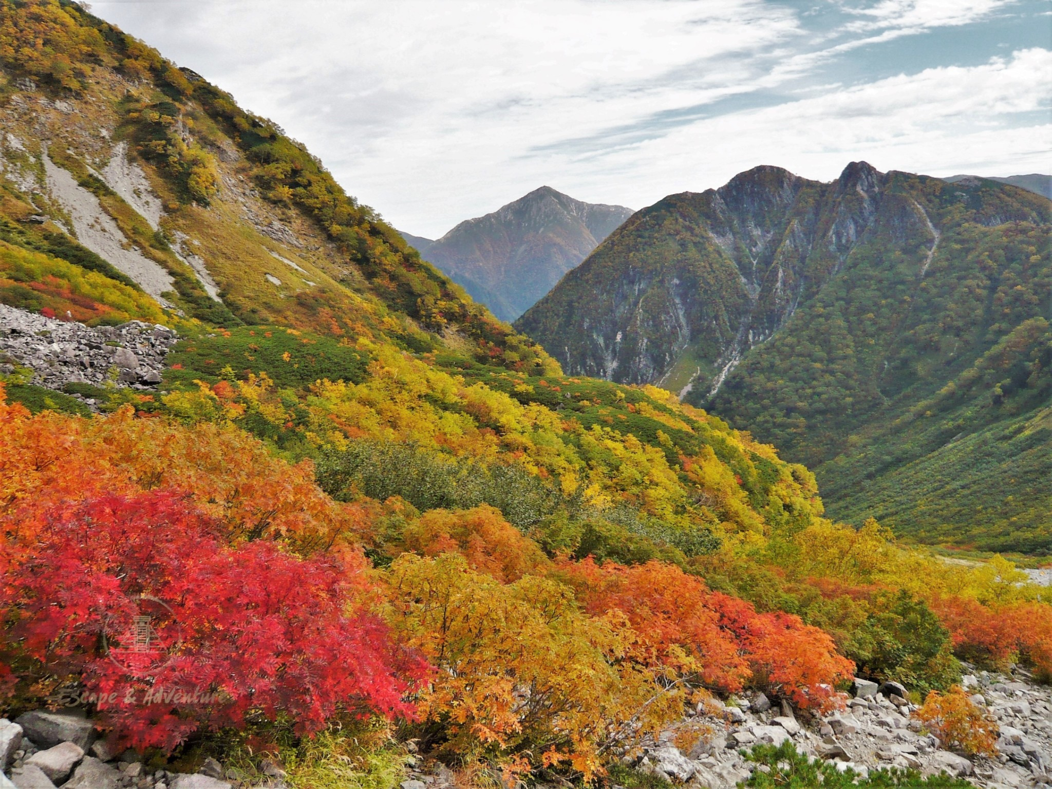 The autumn / fall colours of the bushes and trees of a pristine mountain environment, representing conservation and protection of the natural environment, and sustainable tourism.