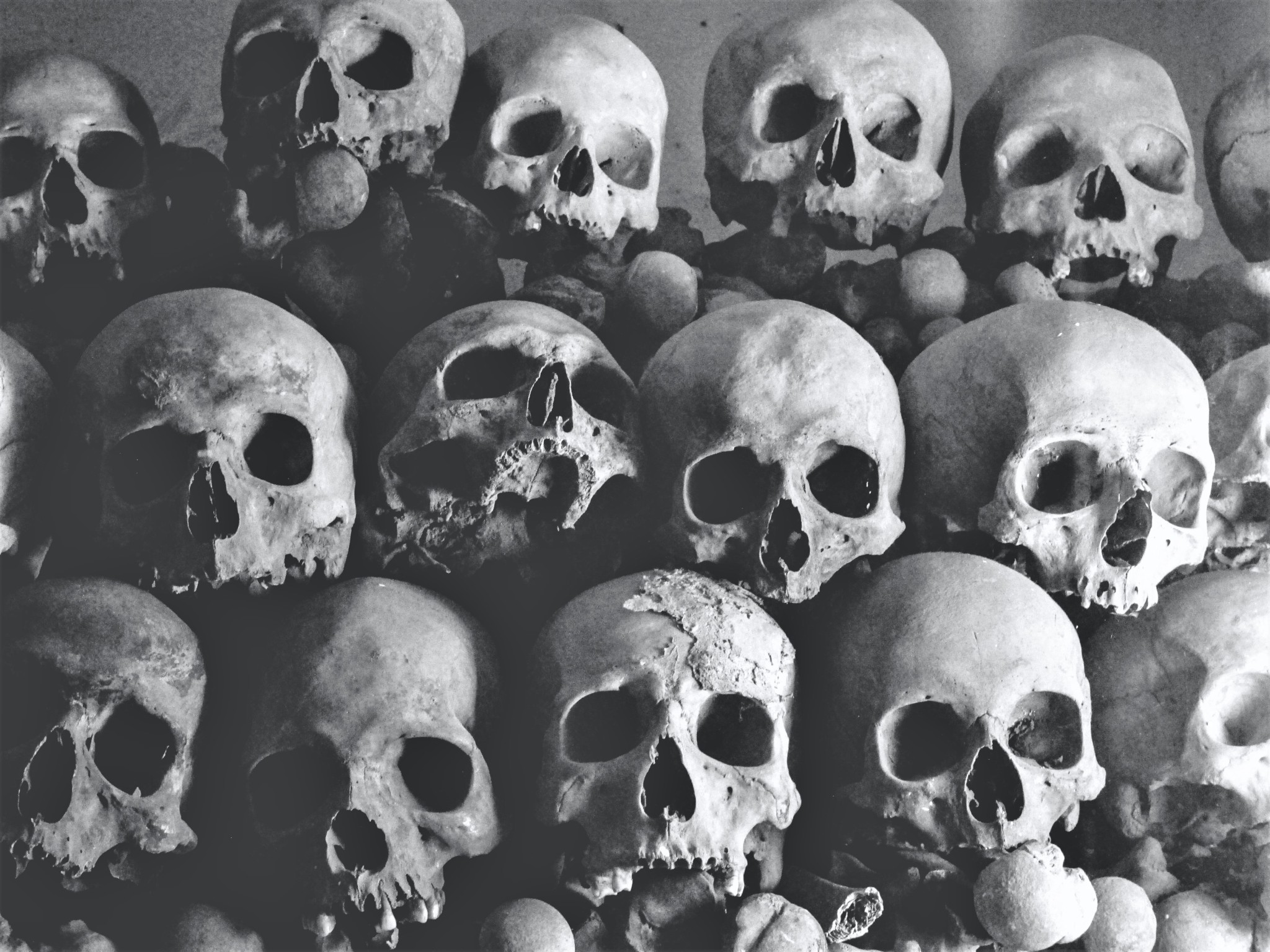 Three rows of human skulls and bones representing murder and death.