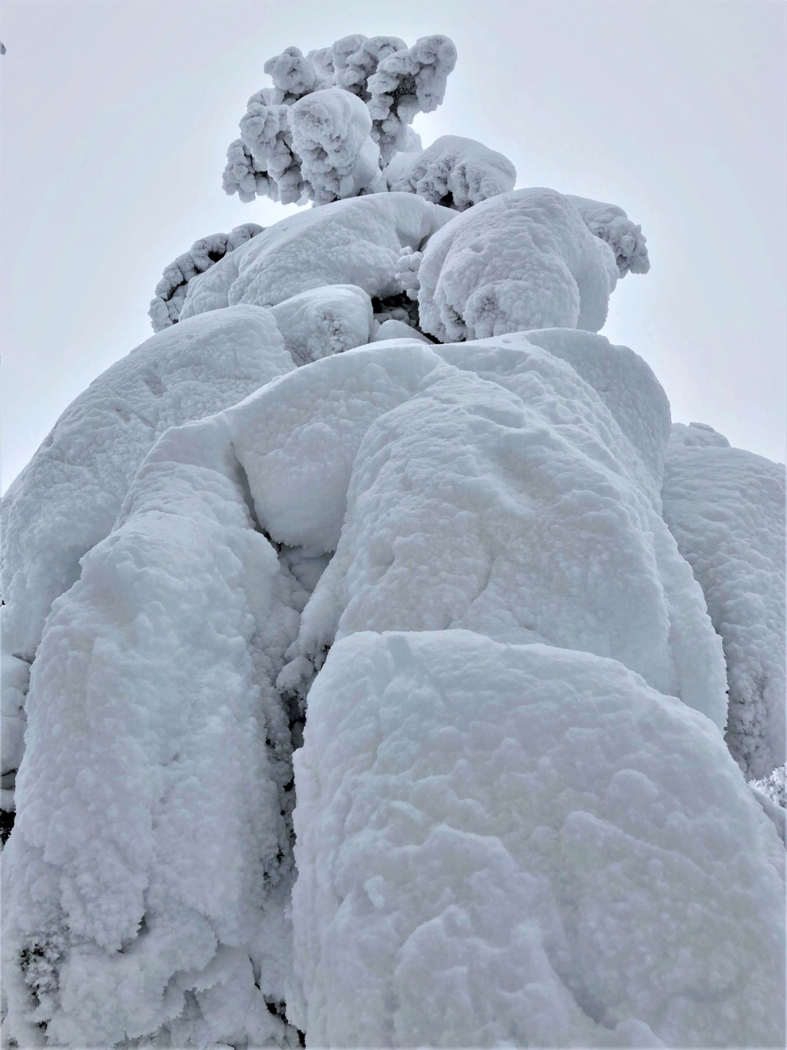 A gigantic snow monster standing on Mount Zao in Yamagata, Japan.