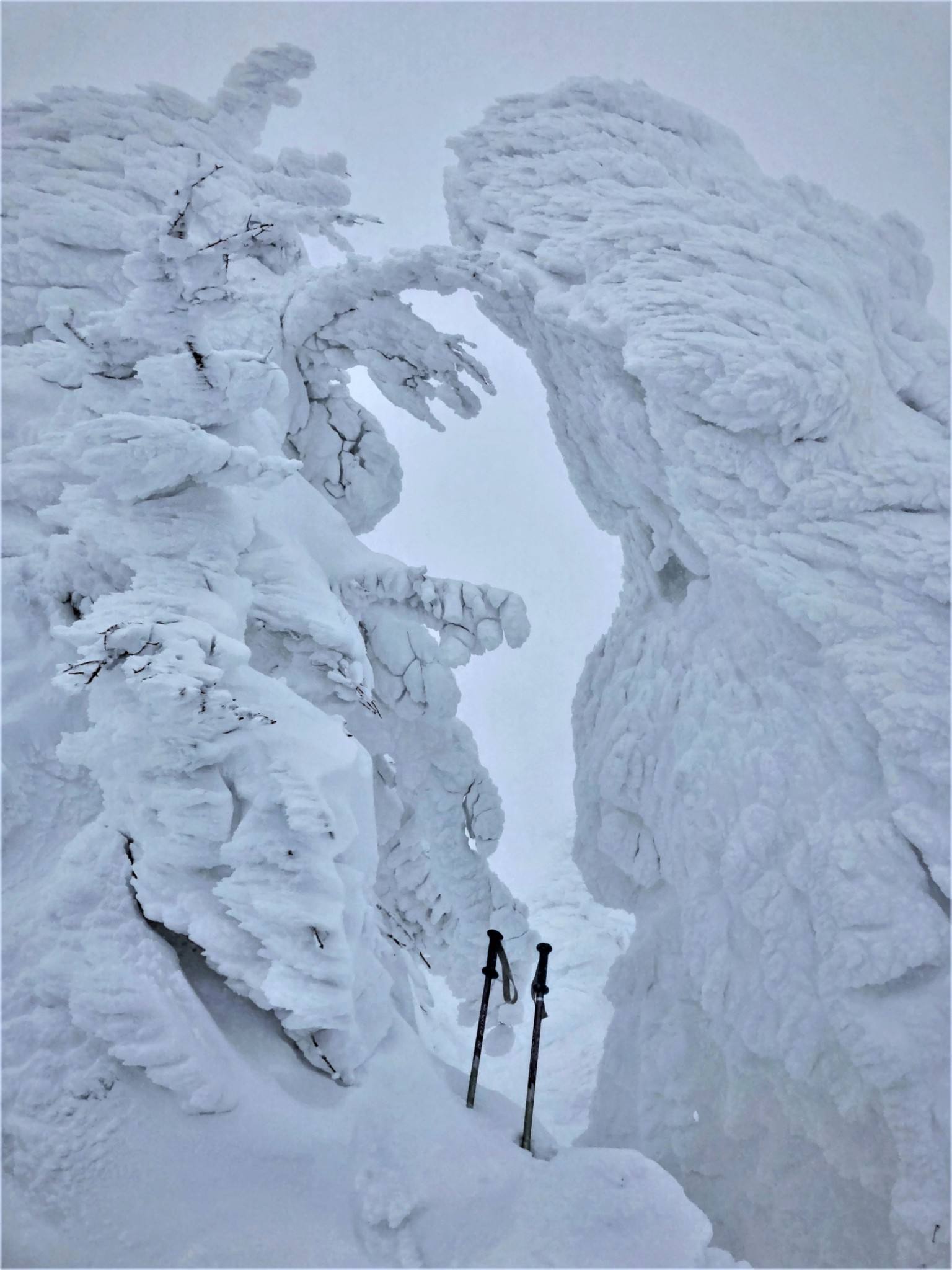 Two massive snow monsters fighting over a pair of ski poles during a blizzard on Mount Zao in Yamagata, Japan.