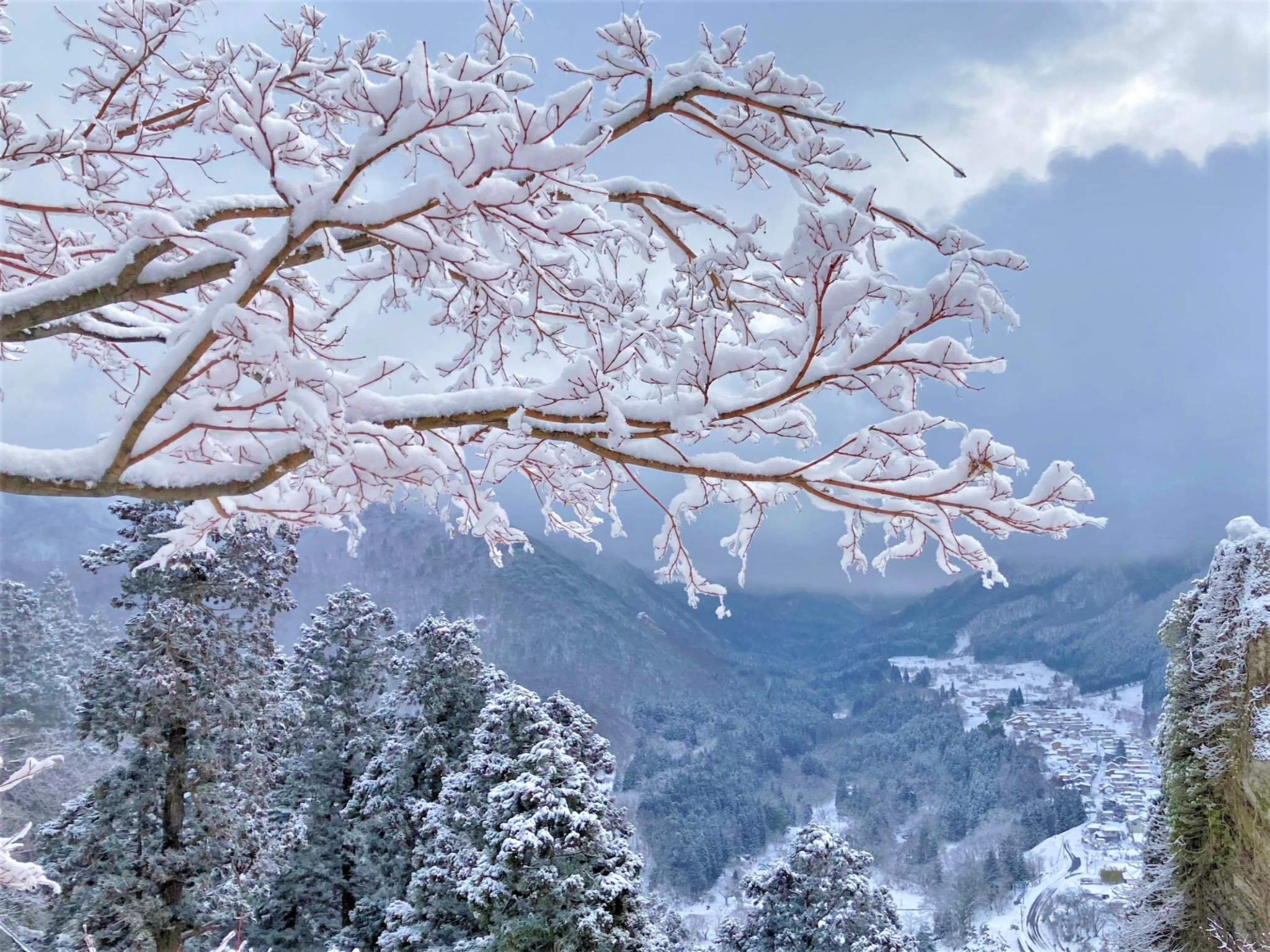 A winter mountain-top view of the Japanese town of Yamadera featuring beautiful snow-covered horizontal tree branches.