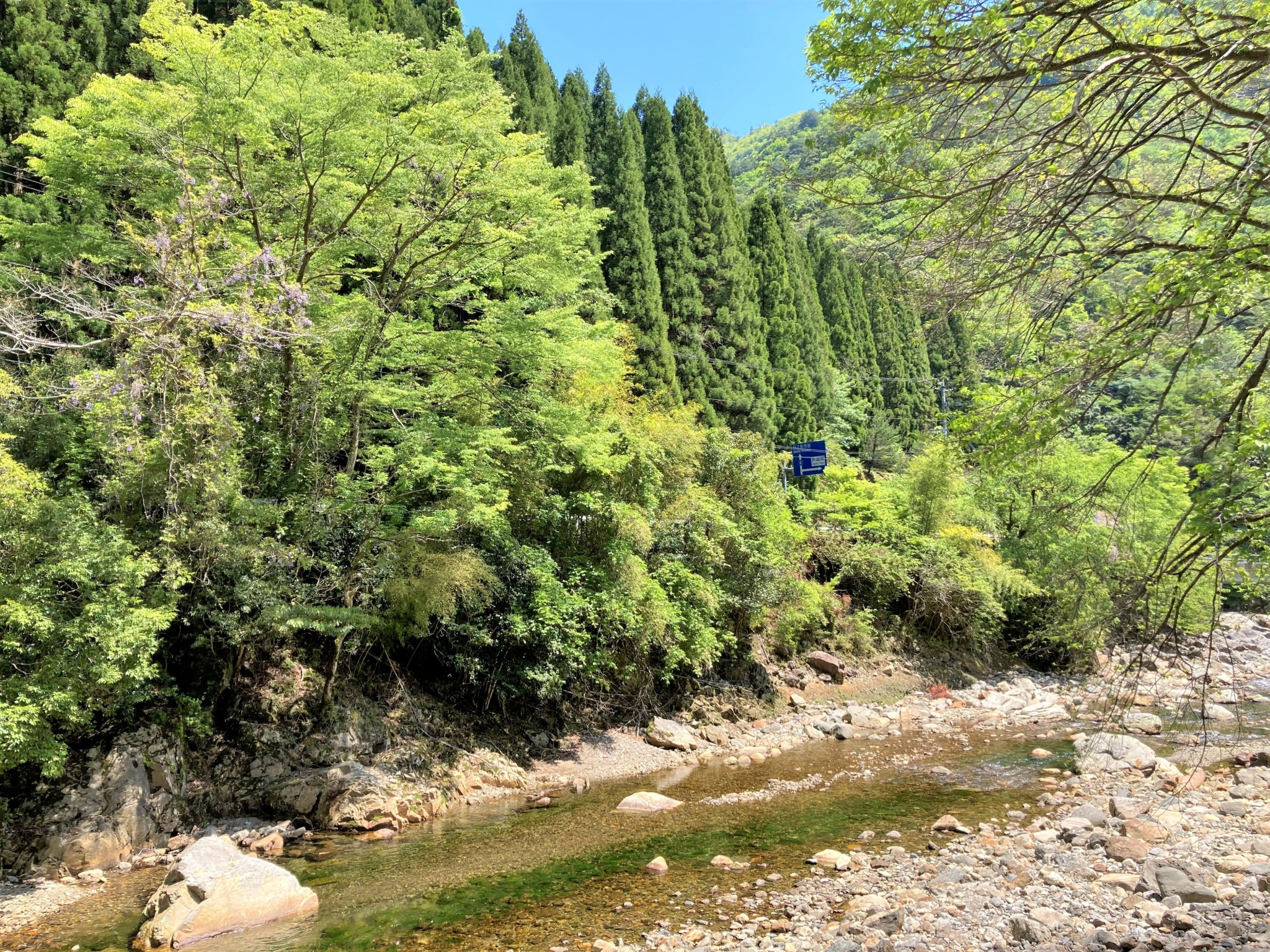 A tranquil stream in a rocky valley filled with bright green trees on a fine day in Kyushu, Japan.