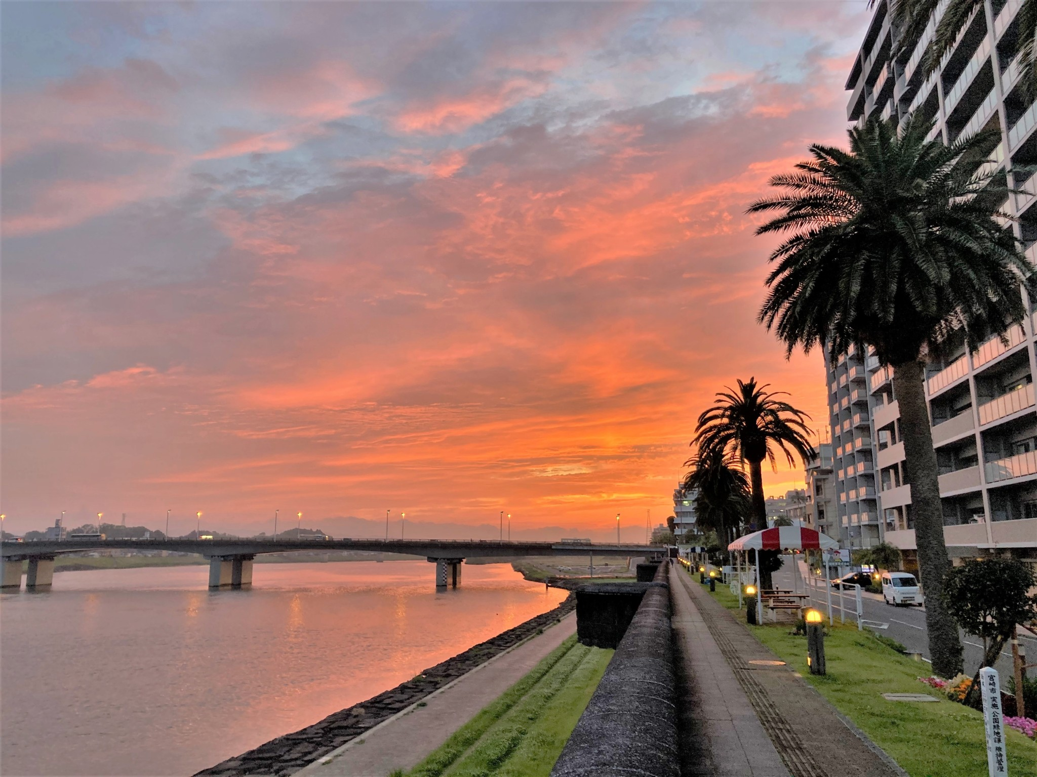 Palm trees, a river, and a bridge beneath a pink, orange, and blue sky at sunset in Miyazaki, Japan.