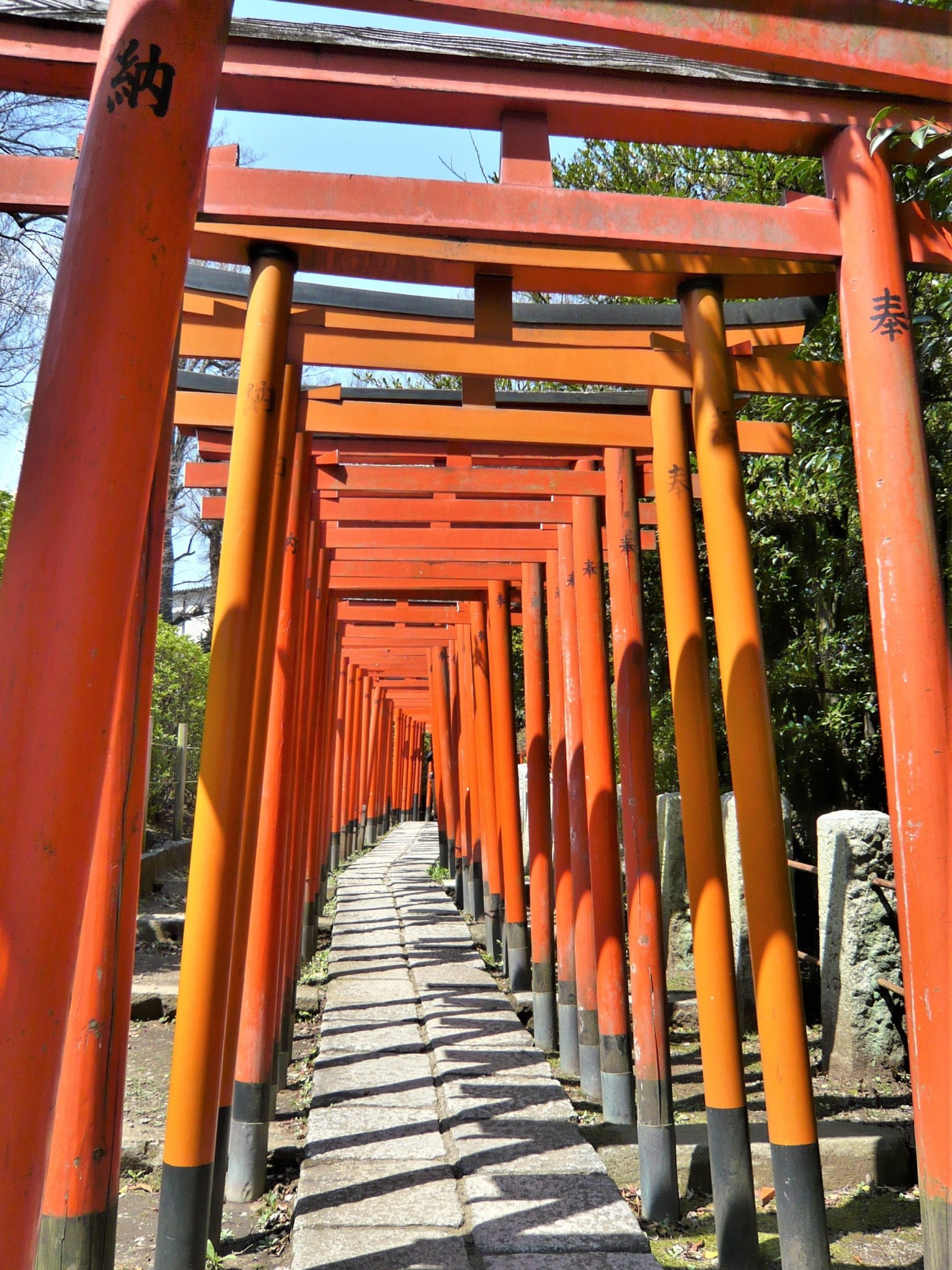 A path leading through a series of red gates at a shrine in Tokyo, Japan.